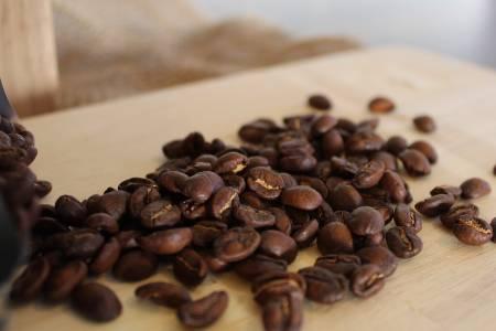 A Closeup of Spirit Animal Catuai Bourbon Beans