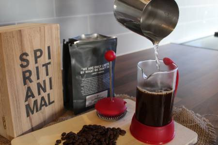Brewing French Press Coffee With Spirit Animal Catuai Bourbon Beans