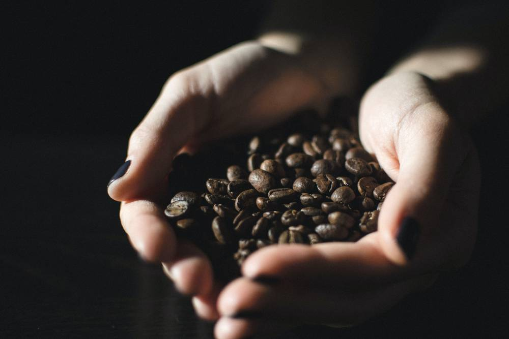 Do Coffee Beans Go Bad? (Here's How To Tell)